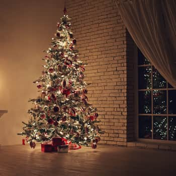 When Should You Take Down Christmas Tree.How To Take Down A Christmas Tree Merry Maids