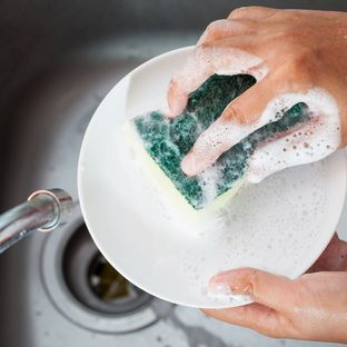 Admirable Clean Dish Sponge Dos And Donts Merry Maids Interior Design Ideas Clesiryabchikinfo